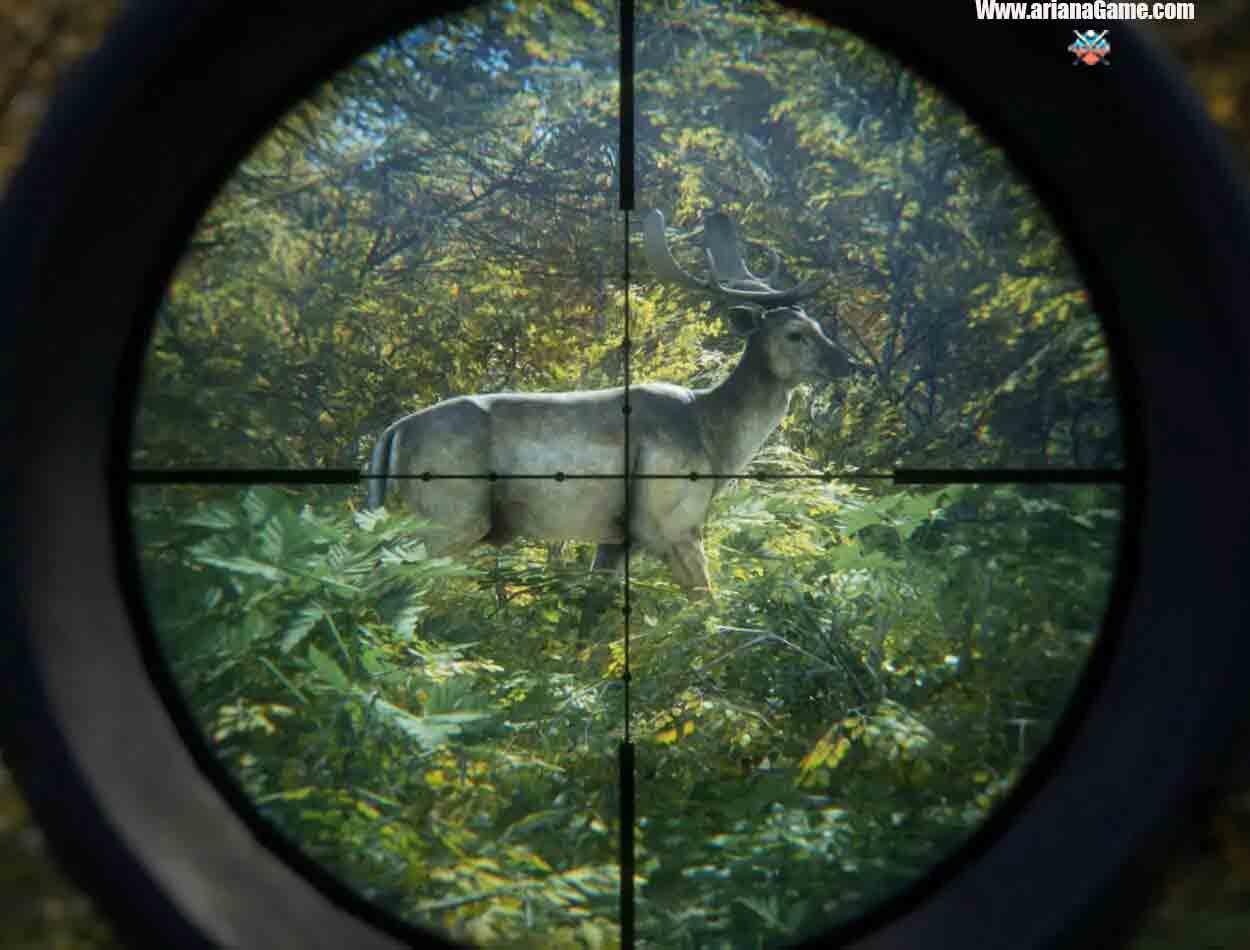 خرید بازی theHunter Call of the Wild Bloodhound